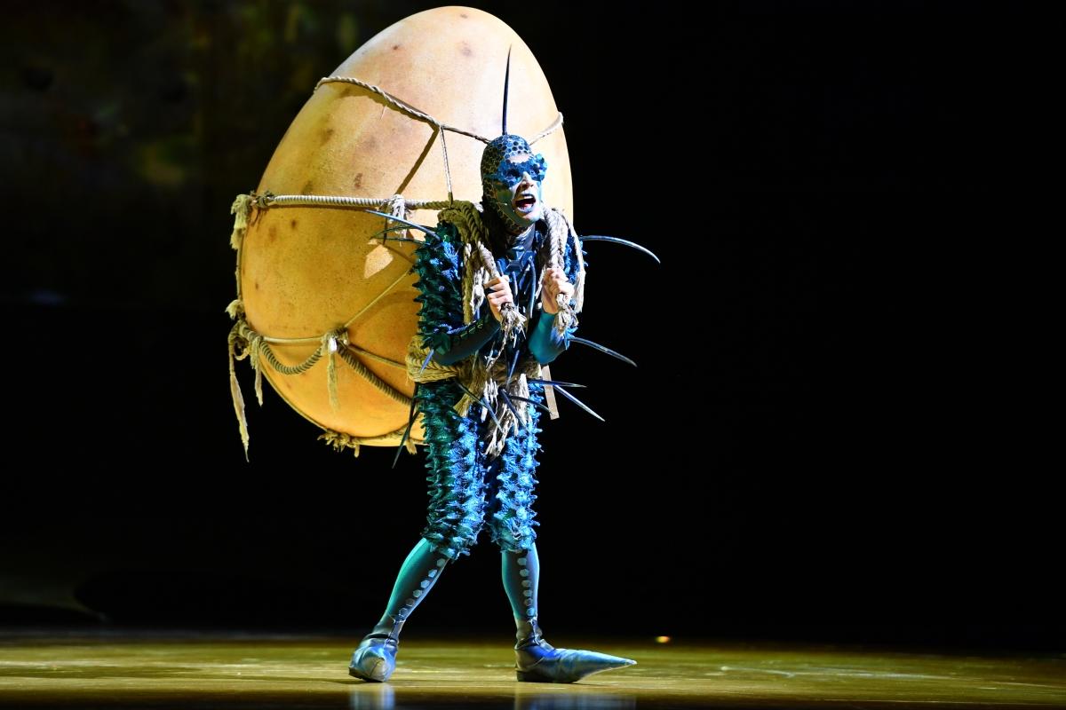 """Saiba mais sobre o espetáculo """"Ovo"""" do Cirque du Soleil, dirigido pela brasileira Deborah Colker, que chega ao Brasil em 2019"""